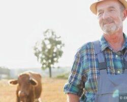 Verlustersatz in der Landwirtschaft