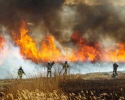 Entgeltfortzahlung für Einsatzkräfte im Katastrophenfall
