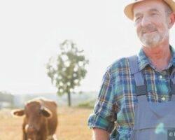 Landwirtschaftliche Fragestellungen zur Investitionsprämie
