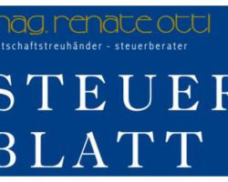 Steuerblatt 3/2013